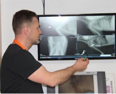 Prezentace operací a konzultace